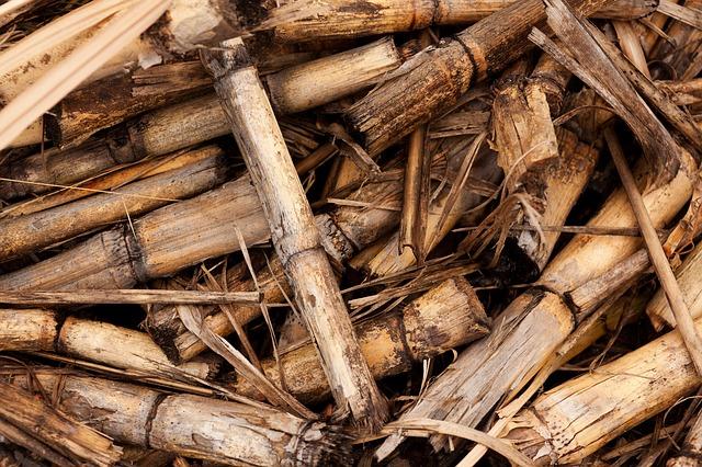 Calderas-de-biomasa