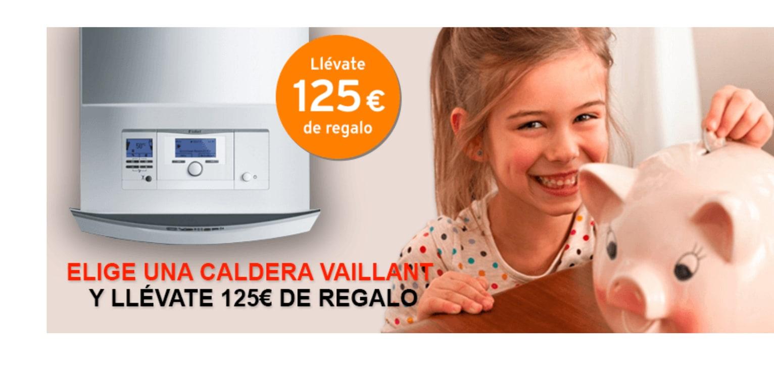 calderas_vaillant_125